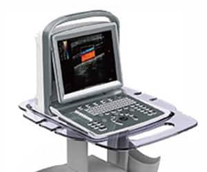 Soundwave 5 Veterinary Ultrasound